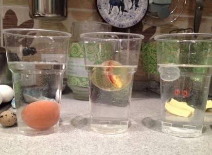 Как проверить свежесть перепелиных яиц