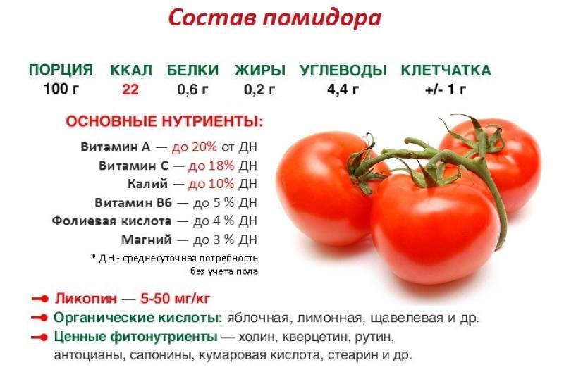 Польза и возможный вред помидоров для организма