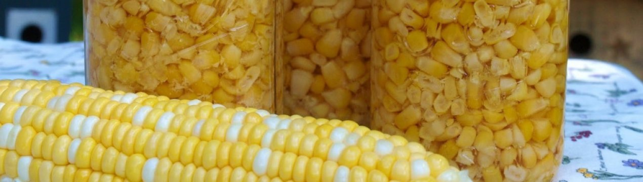 Можно ли есть кукурузу при похудении