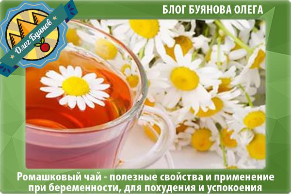 Целительный напиток: полезные свойства ромашкового чая для женского, мужского и детского здоровья