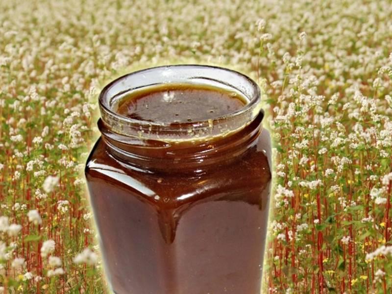 5 beauty секретов использования горного меда. полезные свойства и противопоказания меда