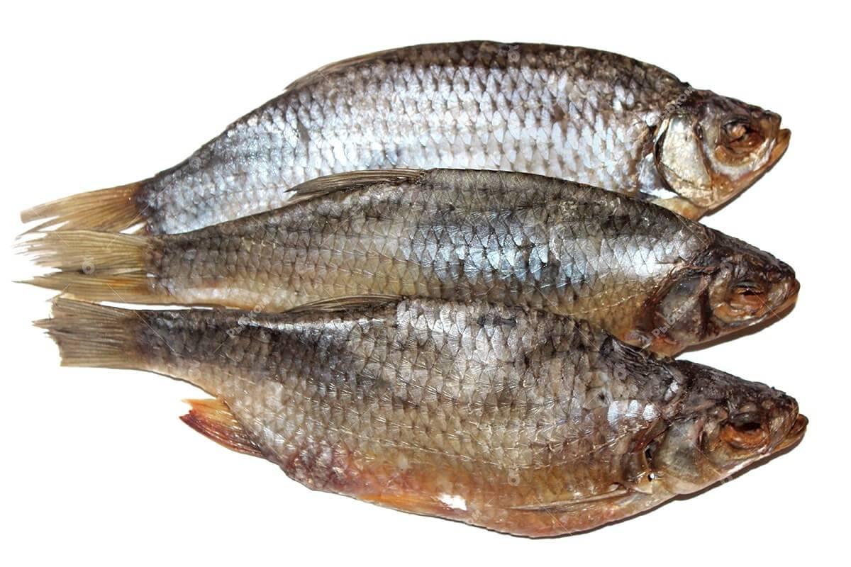 Полезна ли вяленая или сушеная рыба для здоровья человека
