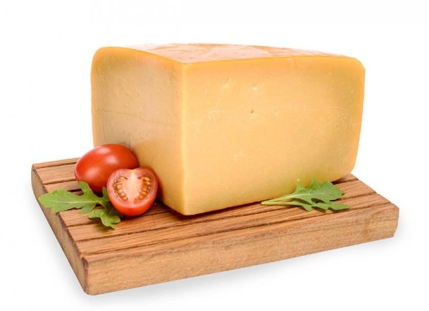 Король сыров пармезан — польза для здорового образа жизни. что особенного в его составе и может ли быть от пармезана вред