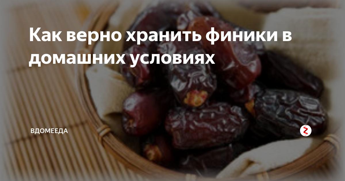Как хранить финики в домашних условиях: 3 признака свежих плодов и самый вкусный сорт