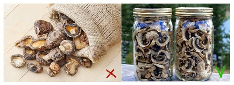 Сколько хранятся сушеные белые грибы