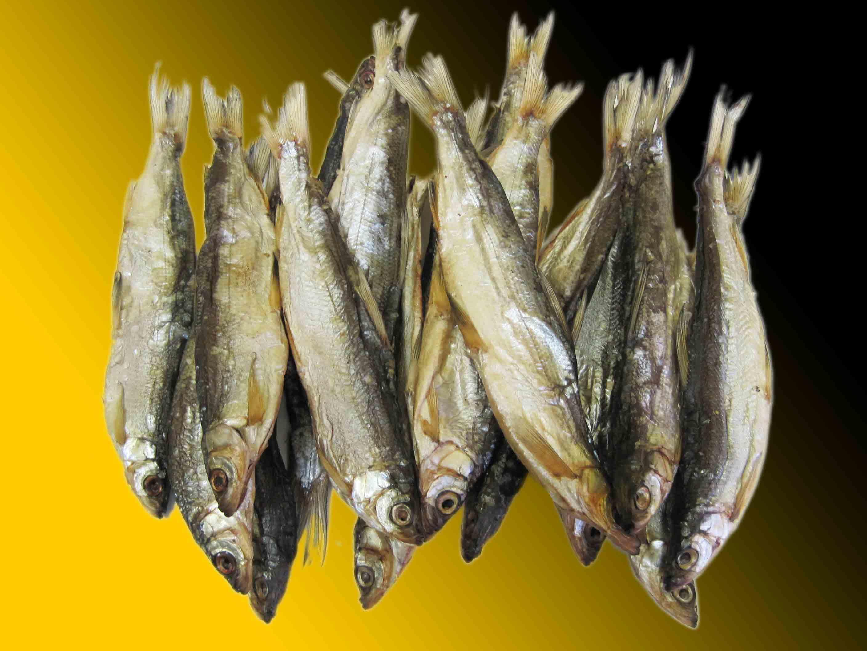 Вяленая рыба польза и вред
