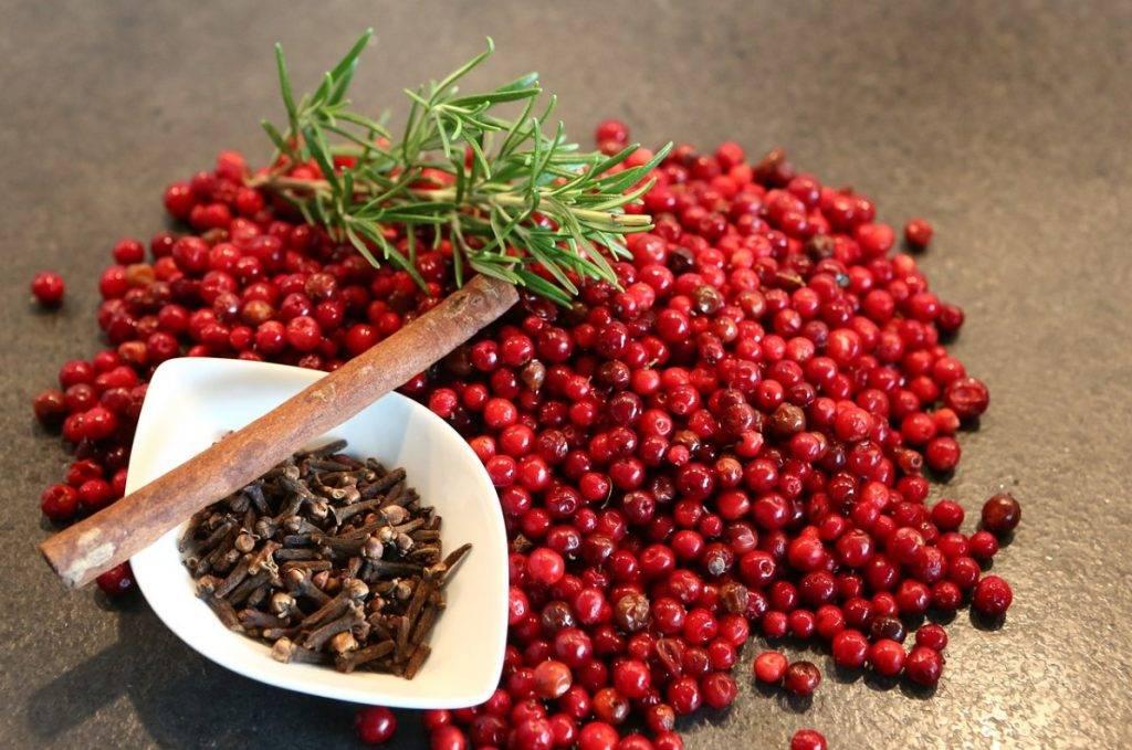 Брусника: полезные свойства и противопоказания, рецепты для здоровья и красоты