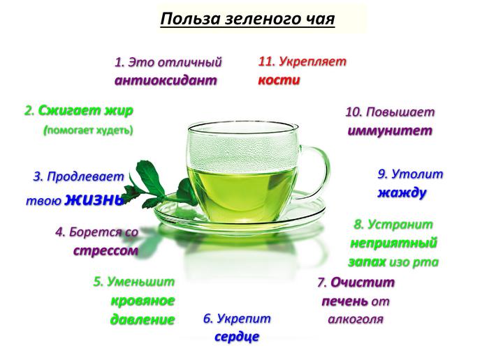 Полезные свойства и вред зеленого чая