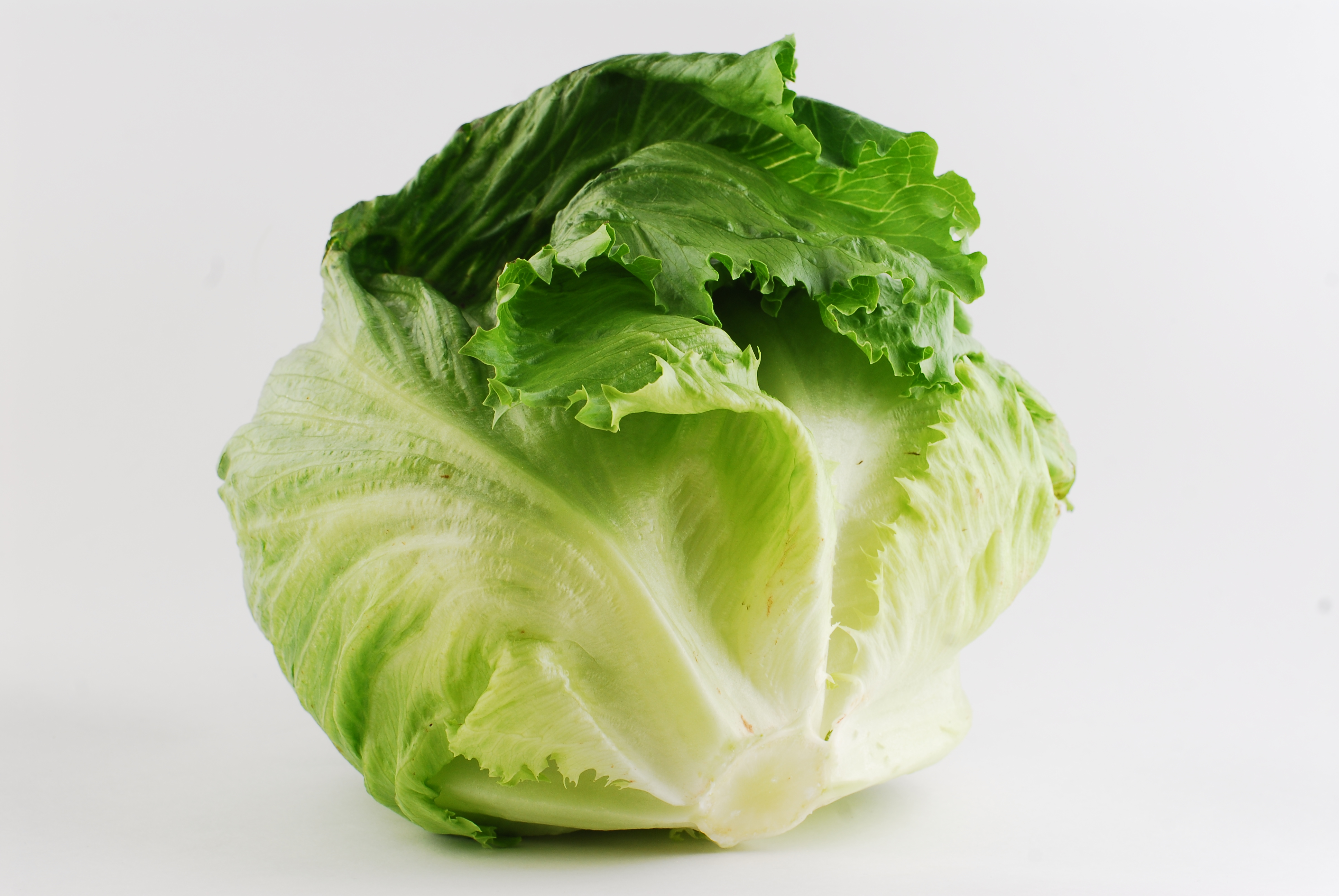 Салат айсберг — витамины
