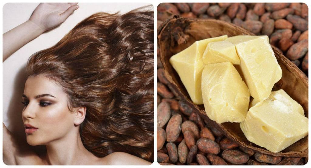 Как использовать масло какао для тела от растяжек, геморроя, ожогов в домашних условиях