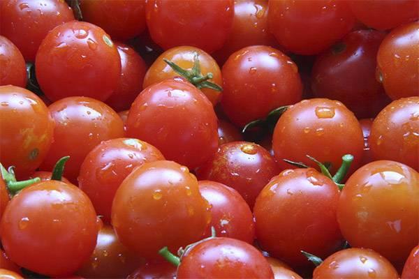 Желтые помидоры — полезные свойства и вред