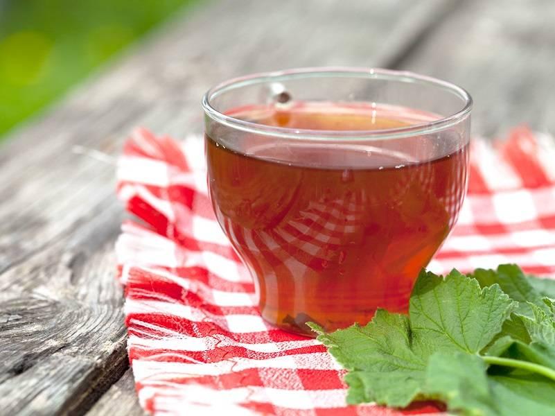 Чай из смородиновых листьев: польза и наслаждение в одной чашке