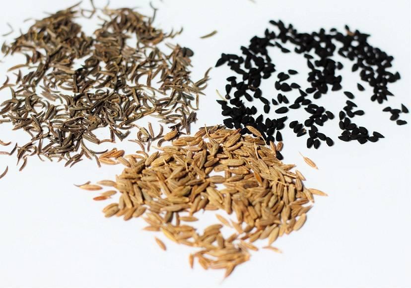 Зира или кумин: полезные свойства и противопоказания для здоровья, сферы использования
