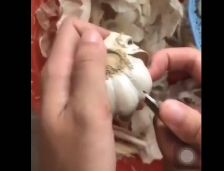 Бытовые извращения: 7 способов оригинально раздеть чеснок