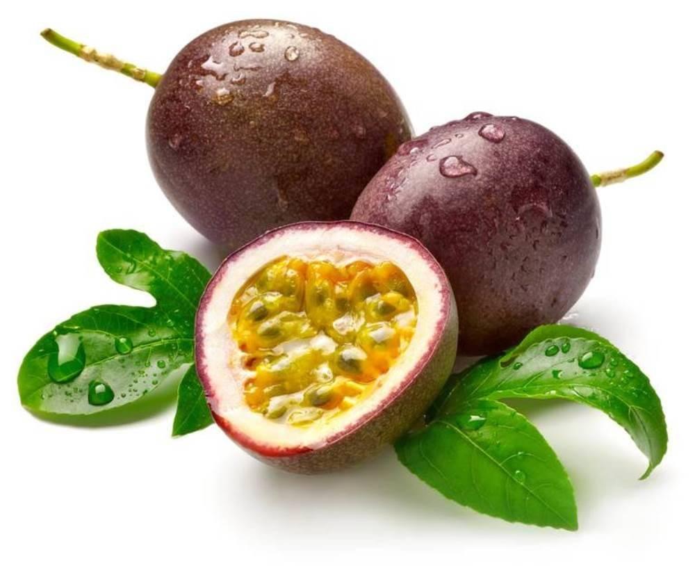 Маракуйя: польза и противопоказания фрукта