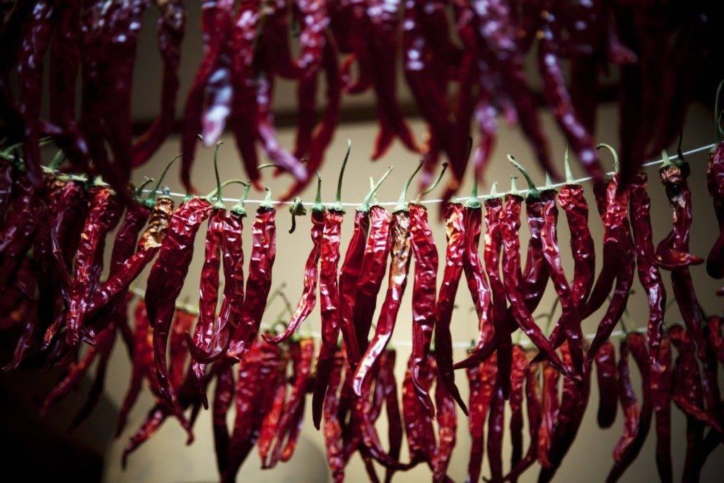 Как сушить сладкий болгарский перец на зиму: в электросушилке или духовке?