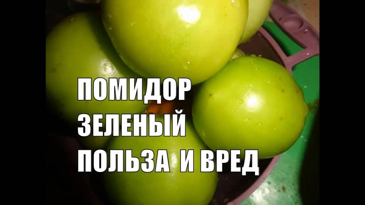 Квашеные зеленые помидоры польза и вред. польза и вред зеленых помидоров