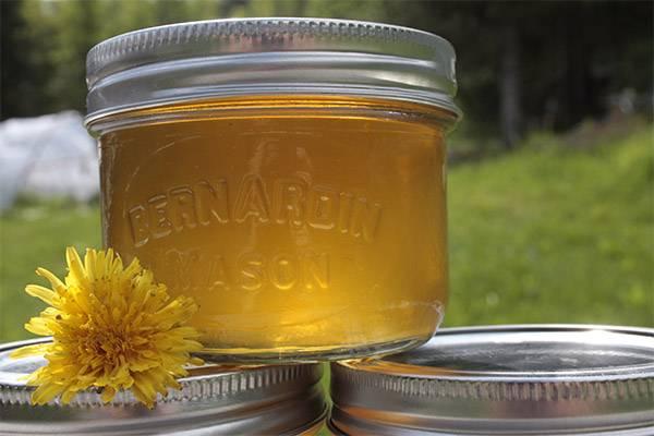 Приготовление уникального мёда из одуванчиков: рецепты. чем полезен мёд из одуванчиков: показания и противопоказания снадобья
