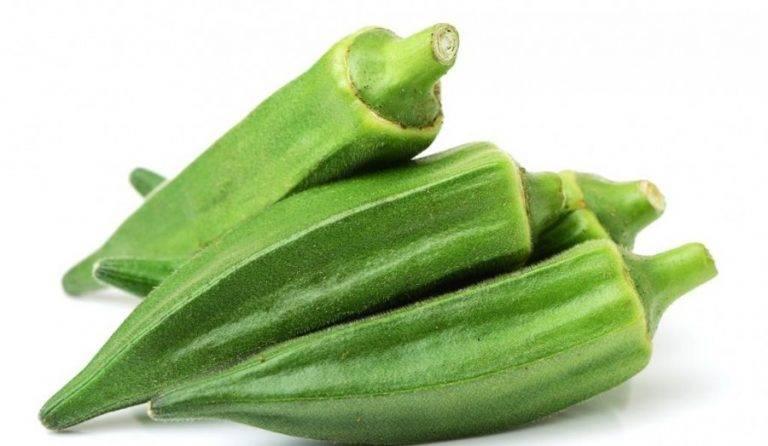 Как используют растение бамия в народной медицине