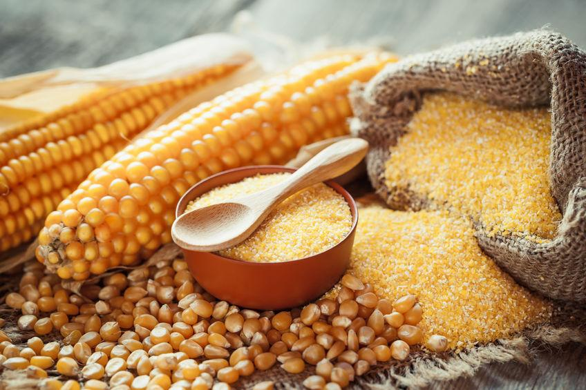 Подробно о вреде и пользе кукурузной каши: изучаем состав и свойства. кукурузная каша: кому, сколько и в каком виде её надо есть