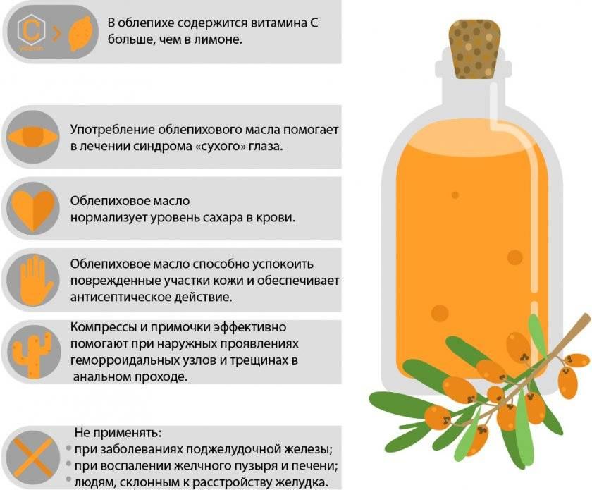 Облепиха. польза и вред сибирского растения для здоровья, противопоказания и правильное употребление