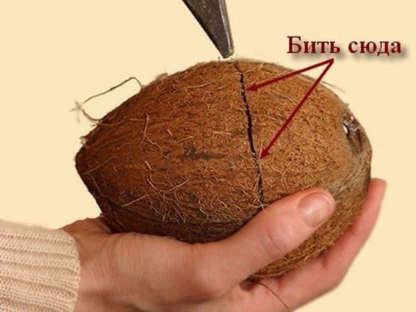 Как раскалывать кокос в домашних условиях?
