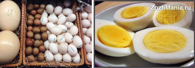 Яйца вкрутую: польза и вред