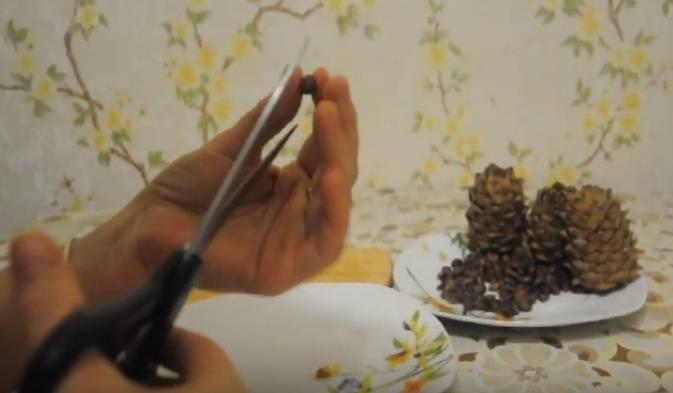 Как очистить кедровые орешки дома
