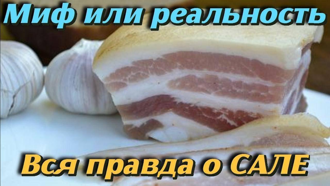 Польза и вред свиного сала: мифы и реальность