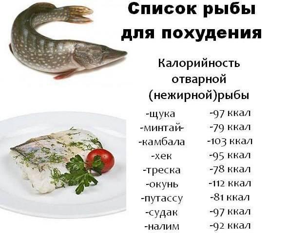 Полезная рыба при диете