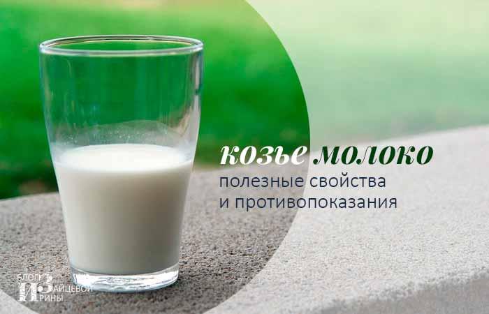 Польза и возможный вред козьего молока