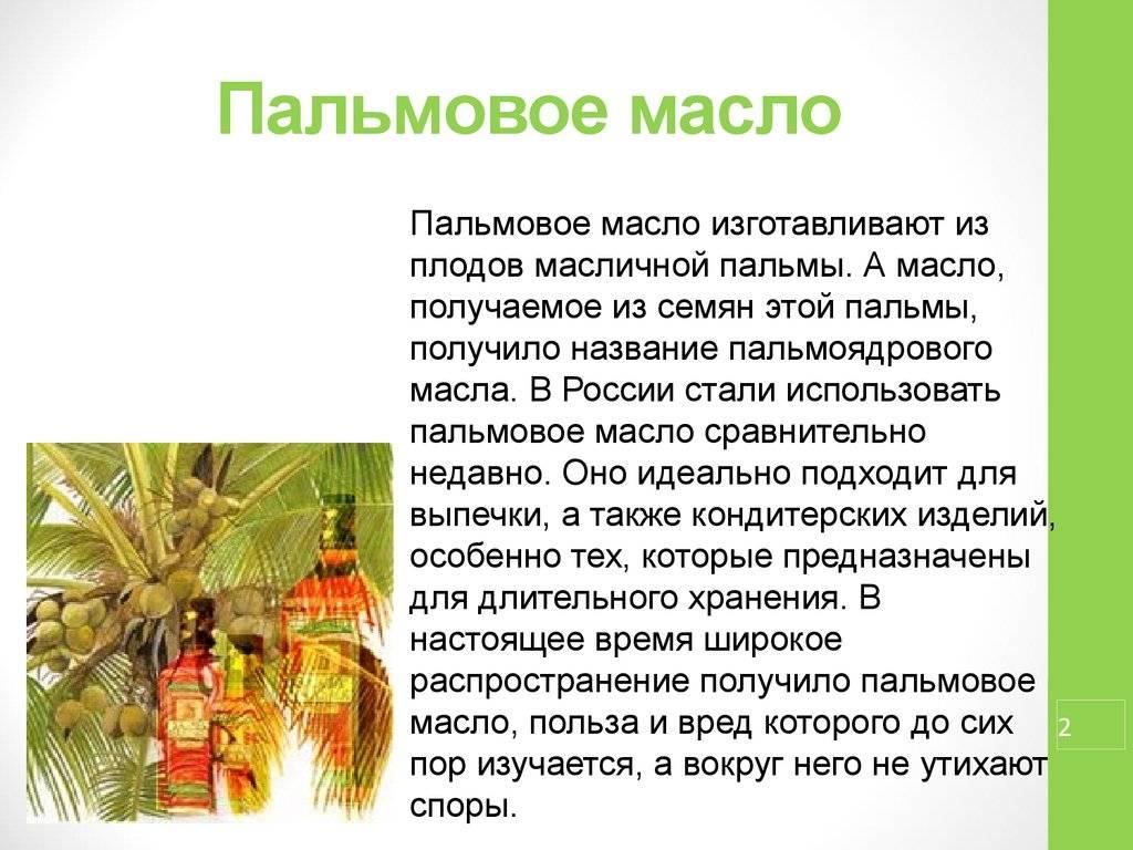 Пальмовое масло : мифы о вреде и реальная правда о пользе.
