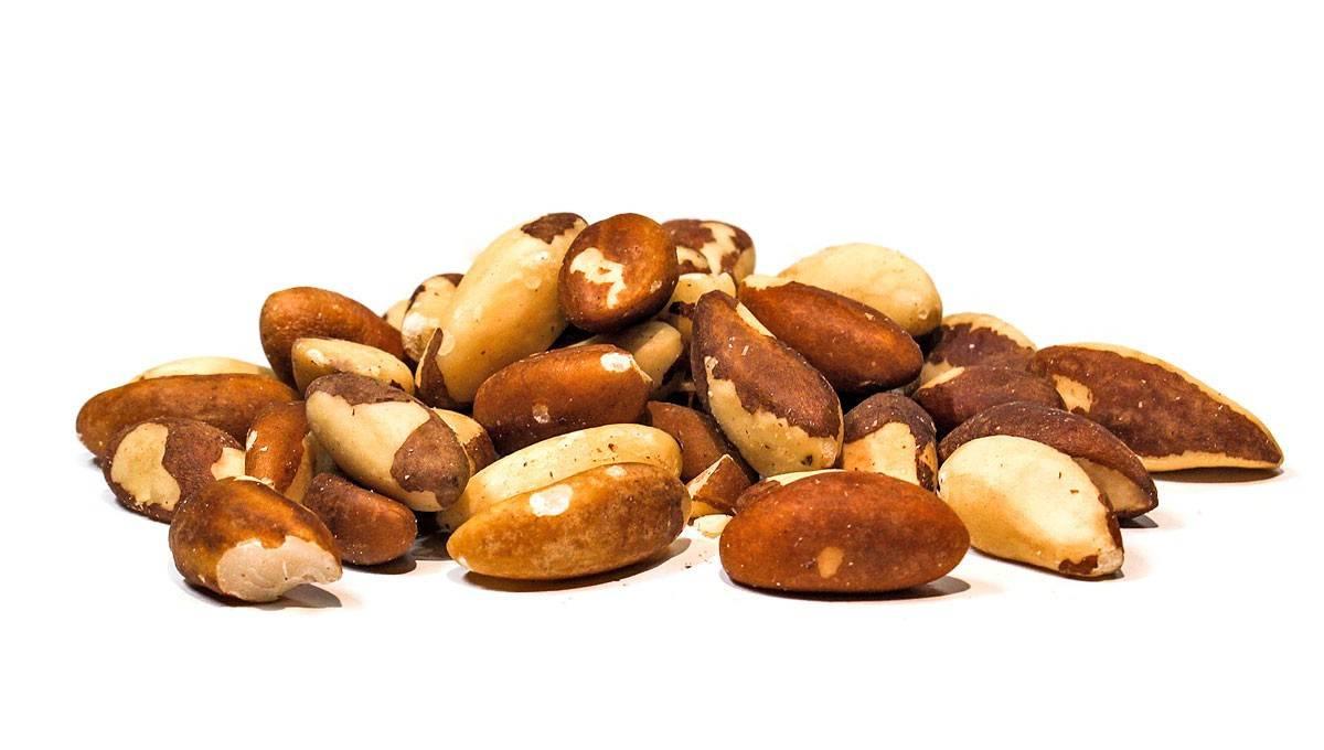 Бразильский орех: полезные свойства и вред