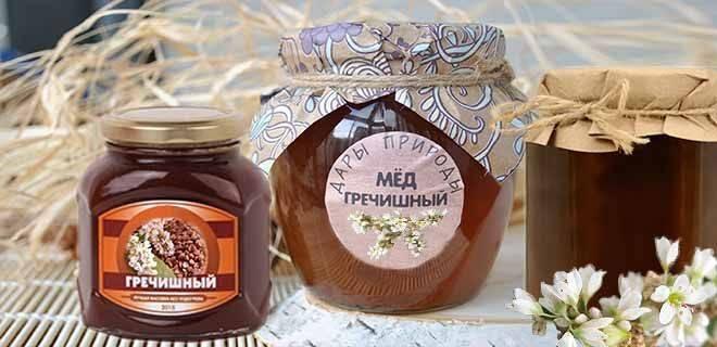 Гречишный мед — польза и вред для здоровья