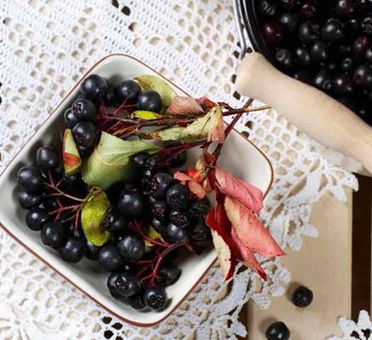 Арония черноплодная: выращивание в саду