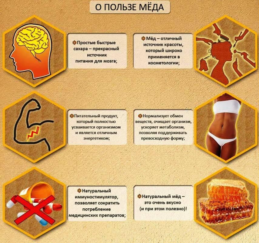 Как следует правильно есть мед, чтобы польза для здоровья была максимальной?