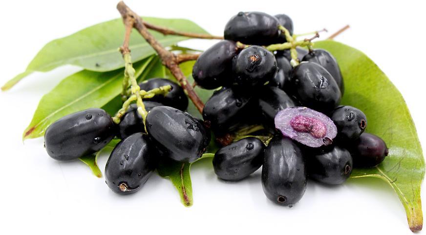 Джамболан – тропическое лекарственное дерево с черными плодами