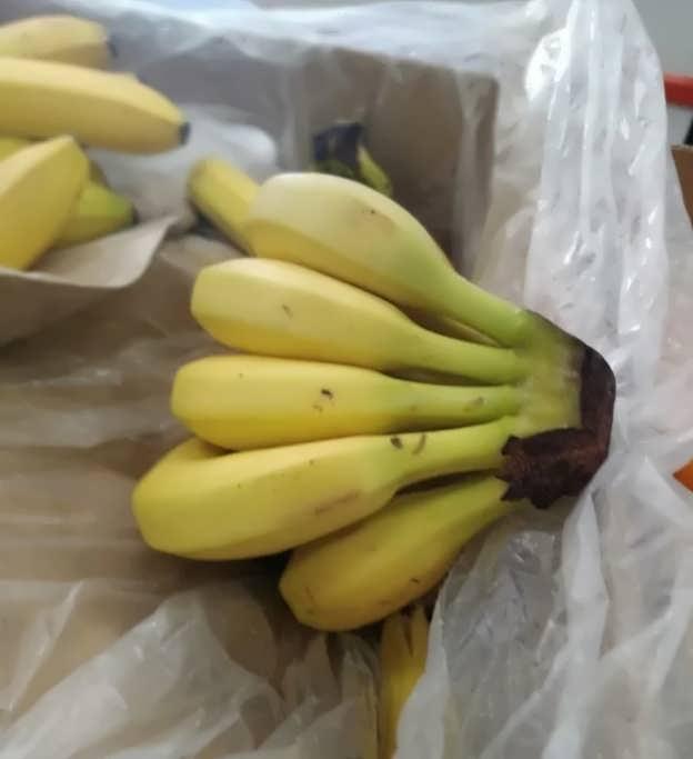 При каких условиях правильно хранить бананы