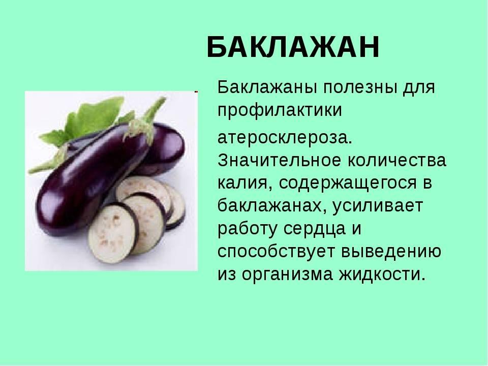 Баклажаны – польза и вред для здоровья