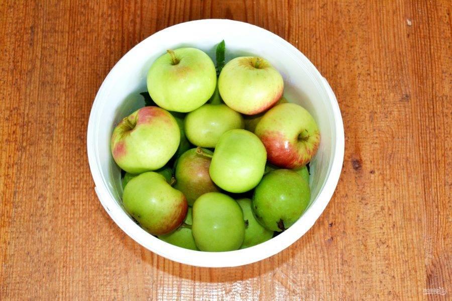 В чем польза и вред моченых яблок для здоровья человека
