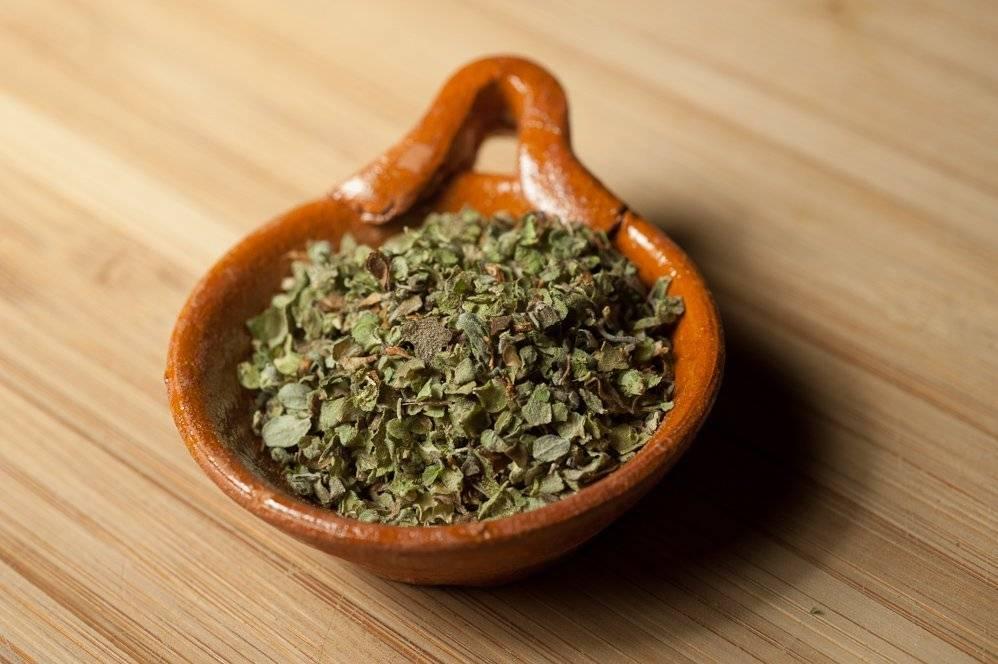 Растение майоран: описание, применение, лечебные свойства