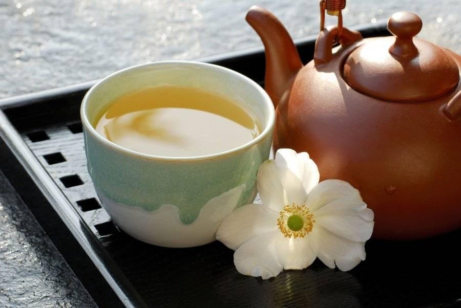 Зеленый чай с молоком — польза и вред