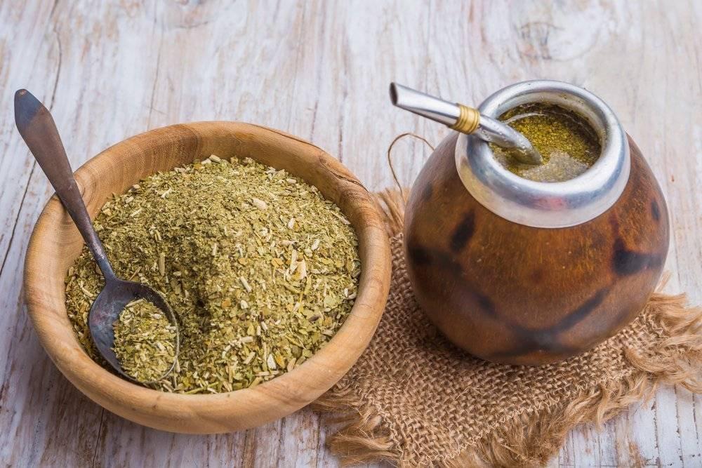 Чай матэ — чем полезен и чем может быть вреден