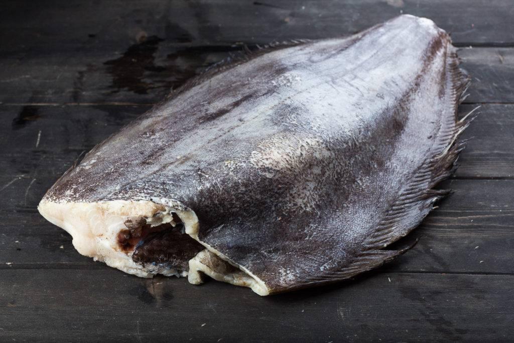 Польза палтуса и его вред для организма — химический состав, влияние на организм, калорийность и приготовление рыбы (130 фото)