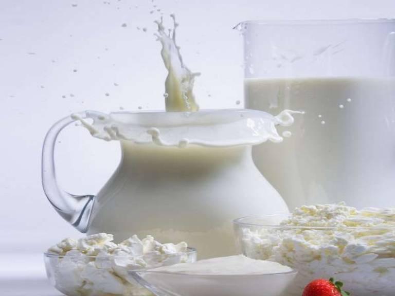 Польза и вред молока для взрослого человека