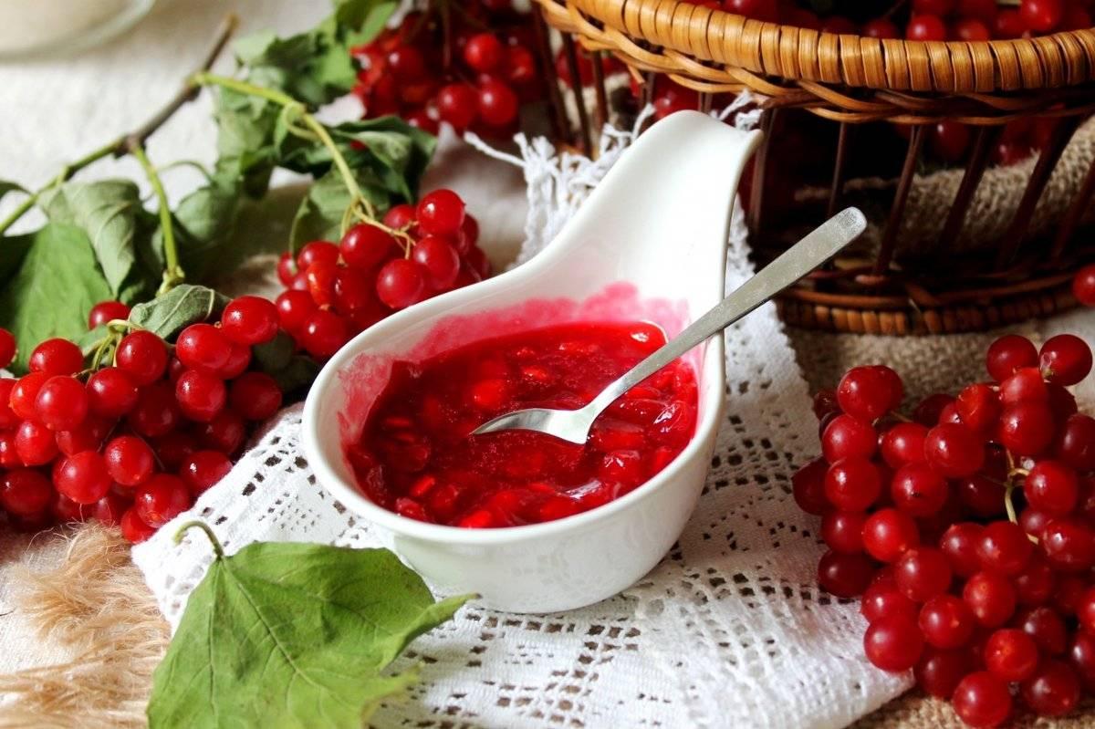 Польза и вред ягоды калины. народные средства лечения калиной