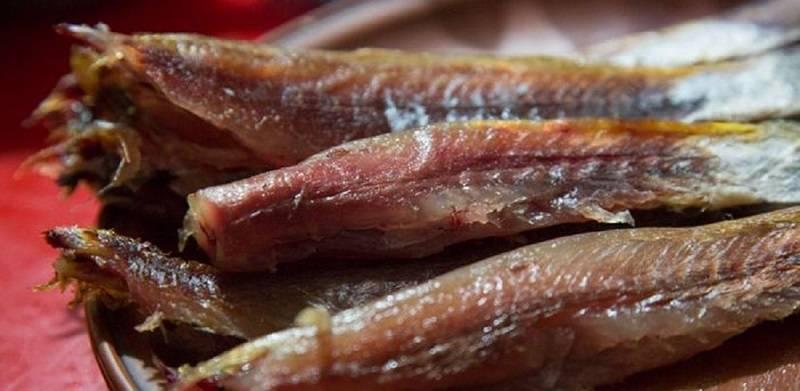 Кефаль: польза и вред, калорийность на 100 грамм и полезные свойства рыбы