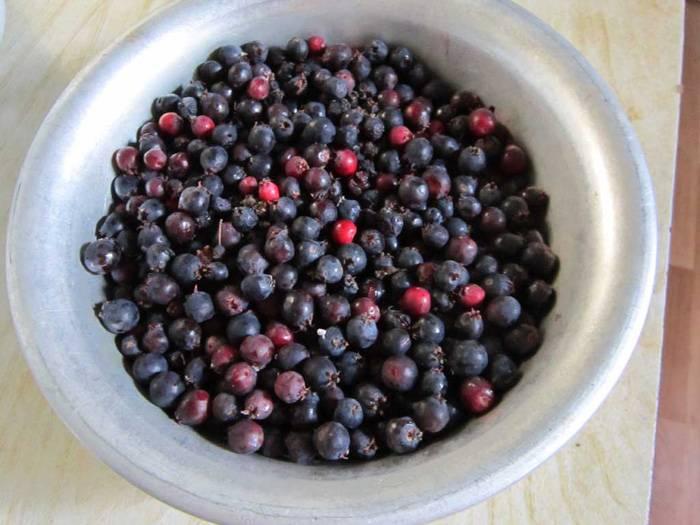Ирга ягода: полезные свойства, противопоказания, польза и вред
