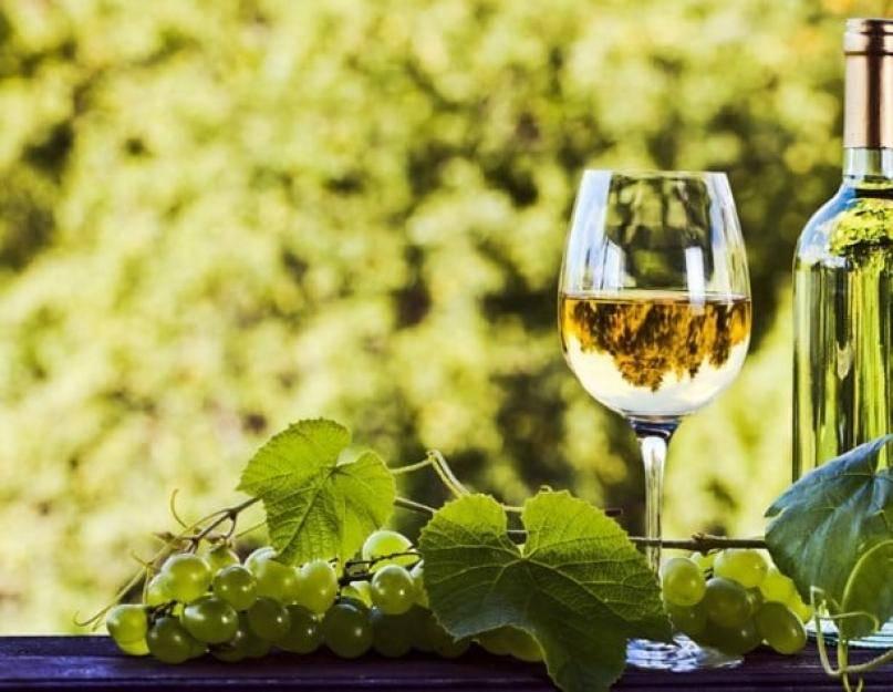 Польза красного вина для здоровья: чем полезно для организма человека