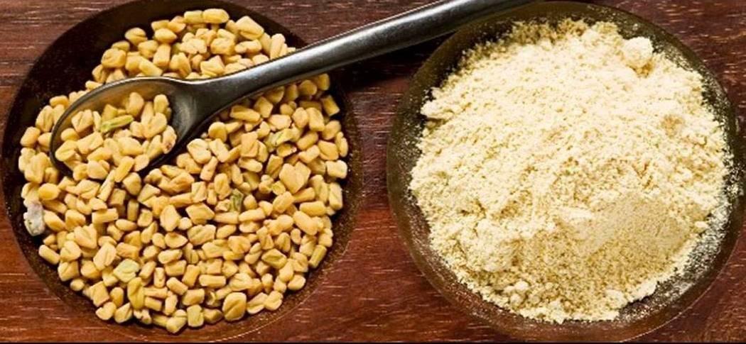 Семена пажитника – применение в лечебных целях